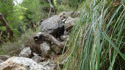 Hier war mal ein Weg, bevor er von den Steinen verschüttet wurde.